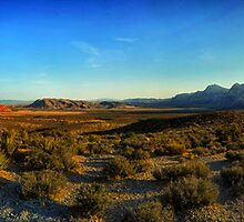 Valley of Fire Plain (Nevada - USA) by André Rizzotti