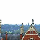 Northampton Rooftop 3 by Veterisflamme