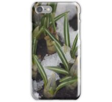 First Day Of Spring???? iPhone Case/Skin