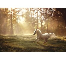 """Dreamland canter"" Photographic Print"