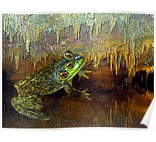 Triopse Frog in a Cave Fantasy Poster