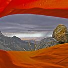 5000m window by Nick  Taylor