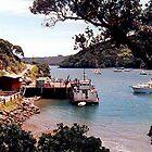 Port Fitzroy, Great Barrier Island, New Zealand........! by Roy  Massicks