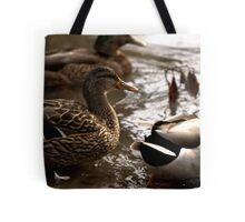 Ducks in Eugene Tote Bag