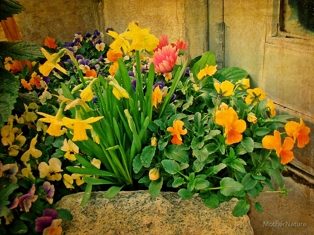 Mixed Flowers for a Heart of Stone by MotherNature