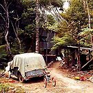 Home is where the heart is !    Great Barrier Island, New Zealand.  by Roy  Massicks