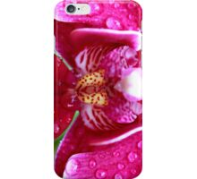 Orchid - iPhone case iPhone Case/Skin