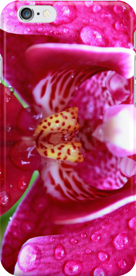 Orchid - iPhone case by MikeO