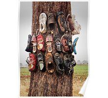 Shoe tree Poster