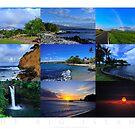 The Big Island by Richard  Leon
