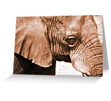 Wrinkles Greeting Card