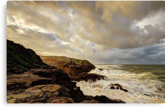 Snapper Point - Storm Pending by Tam  Locke