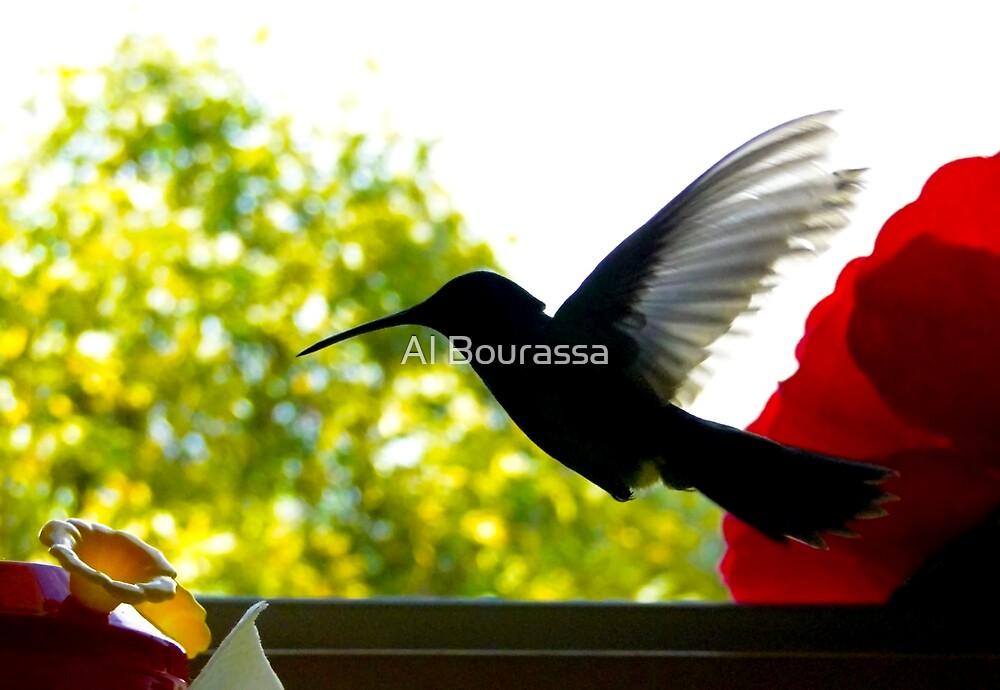Hummingbird Series 11 by Al Bourassa