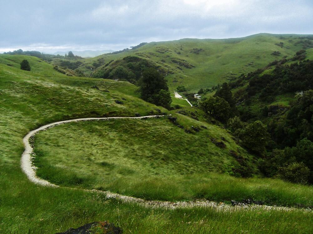 Epic Landscape by cadellin