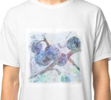 Vibrant Frost 1 with frame Classic T-Shirt