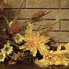Autumn Display by Monnie Ryan
