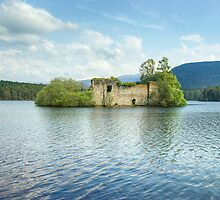 The Castle On The Island In The Loch by Jamie  Green