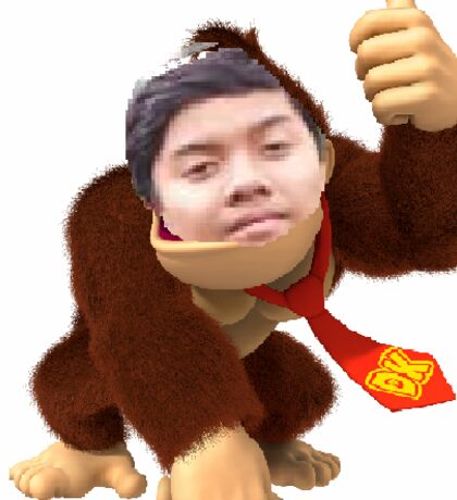 Donkey Kink Kong Sticker
