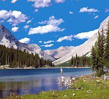 Elbow Lake by Jim Sauchyn