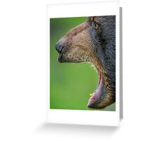 Business side of bear Greeting Card
