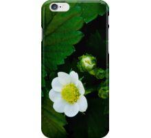 iPhone 04 iPhone Case/Skin