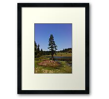 country park Framed Print