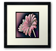 Colorful Daisy Framed Print