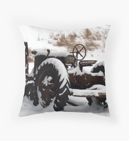 """Hybernation"" Throw Pillow"