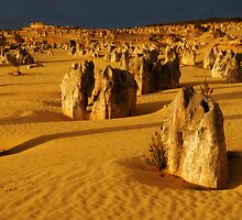 Nambung Beauty Western Australia by Bob Christopher