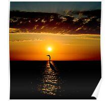 Heron at sunrise Poster