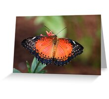 lacewing beauty Greeting Card