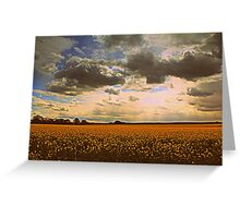 Oilseed Rape Fields, along the Teesdale Way Trail. North England Greeting Card