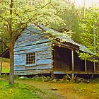 NOAH OGLE CABIN,ROARING FORK by Chuck Wickham