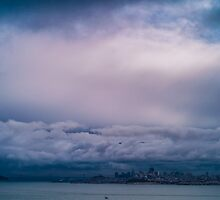 San Francisco: The Fog by Evan Weiss
