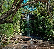A Little Waterfall by Steve Randall