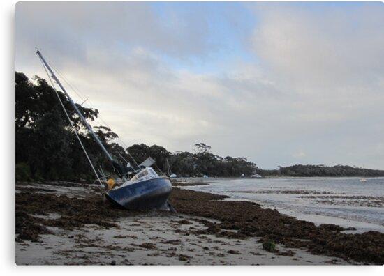 """I hate Mondays "" 2  ... (Callala Bay, NSW  6.6.12) by Lunaria"