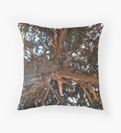 Mighty Cypress Throw Pillow