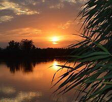 sunset by fantasygerle