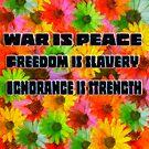 War is Peace, Freedom is Slavery, Ignorance is Strength by David Rozansky