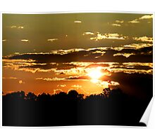 Piney Sunset Poster
