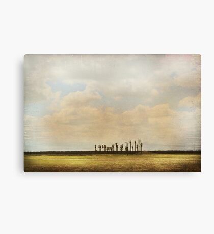 Not Quite An Oasis Canvas Print