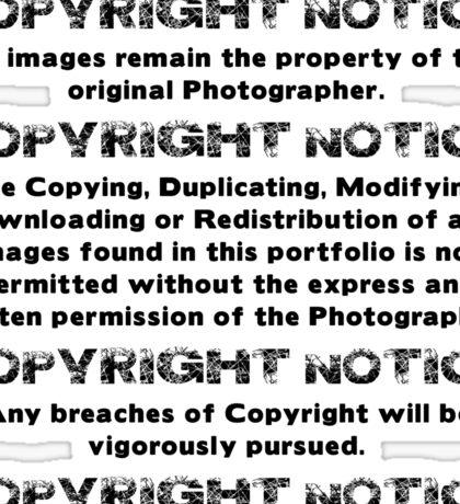 COPYRIGHT NOTICE Sticker