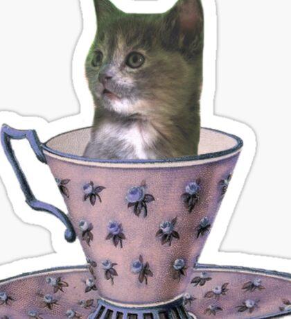 No Sugar Added - kitten clothes & stickers Sticker