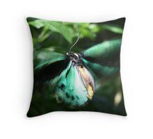Jade Butterfly Throw Pillow