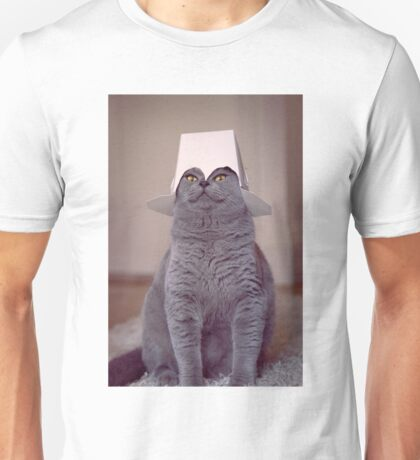 fig 1.4 - Cat with Chinese takeaway box on head Unisex T-Shirt