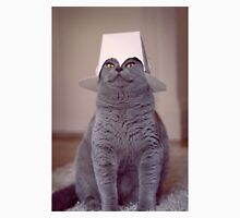 fig 1.4 - Cat with Chinese takeaway box on head T-Shirt