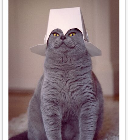 fig 1.4 - Cat with Chinese takeaway box on head Sticker