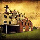 Haven's Mill by Lea  Weikert