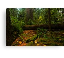 Giants in the Cathedral Canvas Print