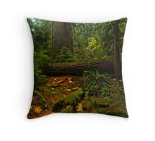 Giants in the Cathedral Throw Pillow